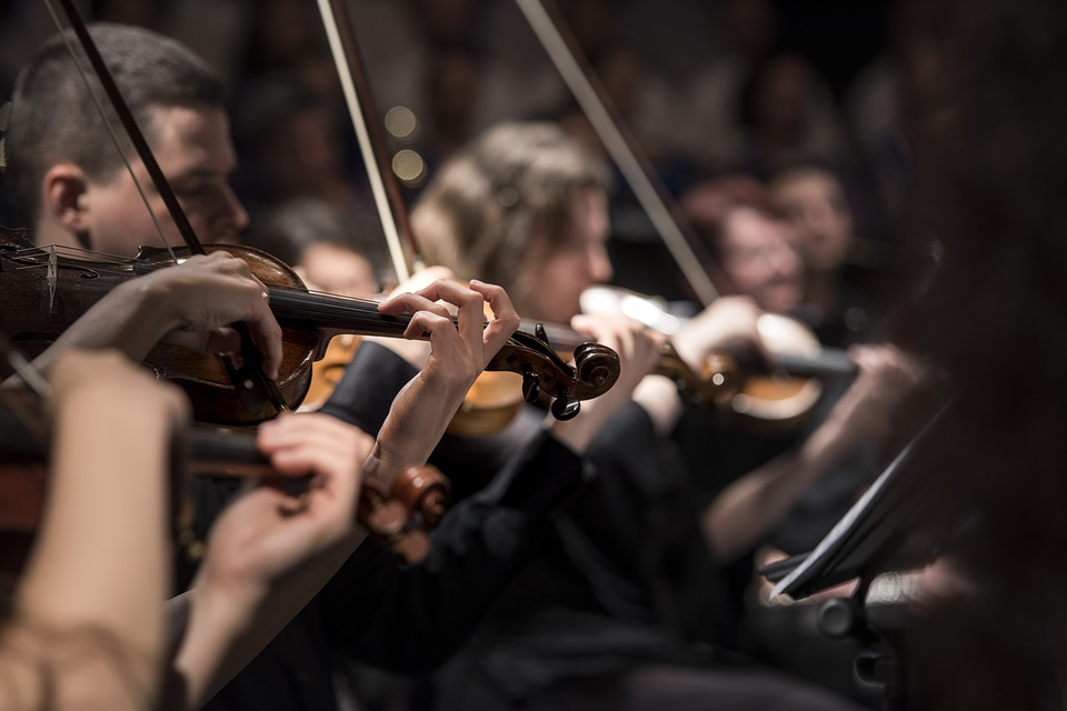 master program muzičke škole